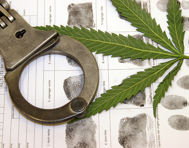 Cannabis leaf with handcuffs and fingerprints