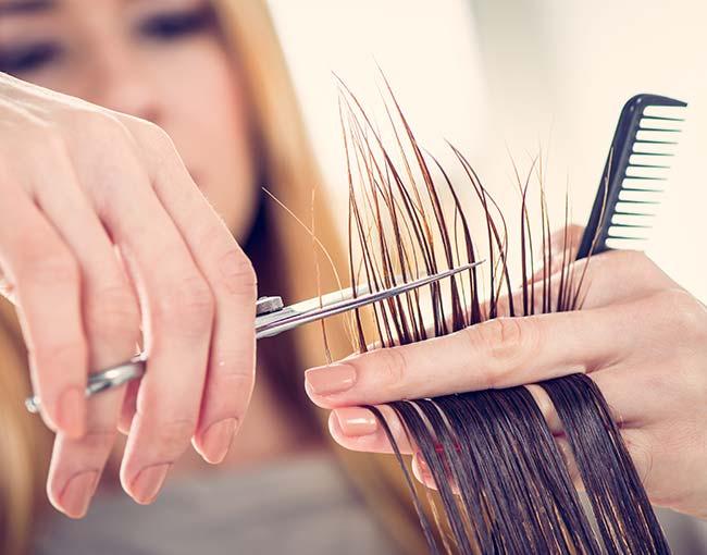hair stylsit cutting hair