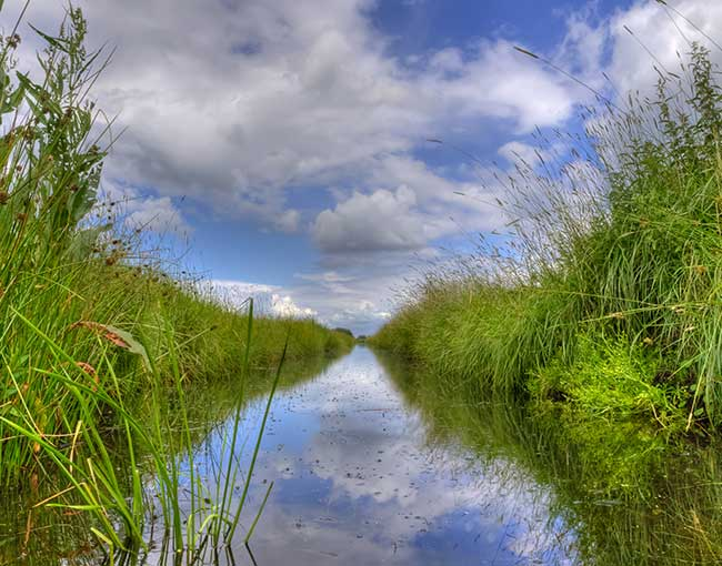 freshwater ditch