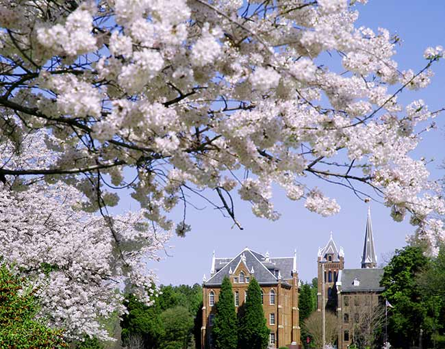 spring-on-campus