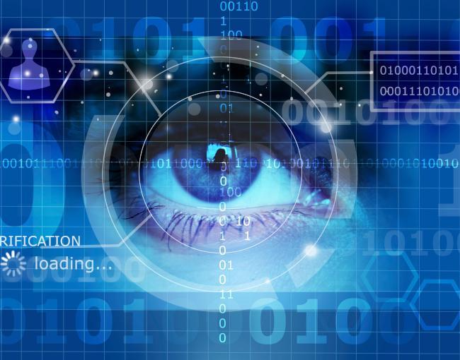 An eye undergoing a biometric eye screening
