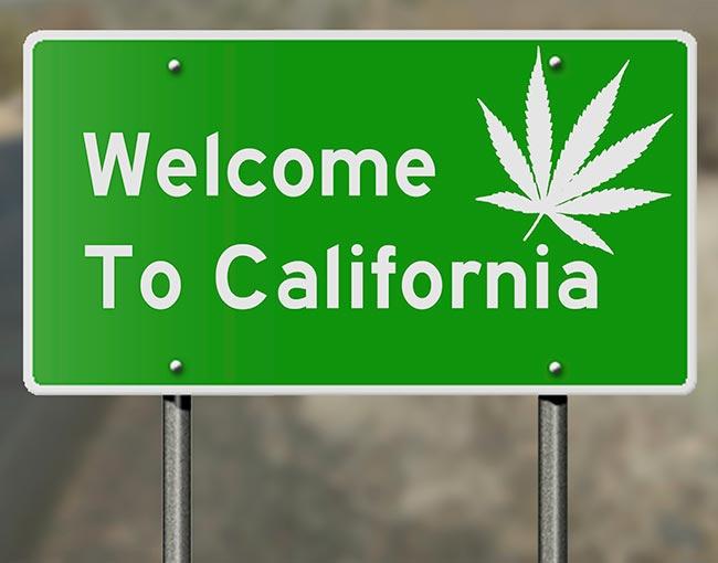 california-marijuana_22125486773_o
