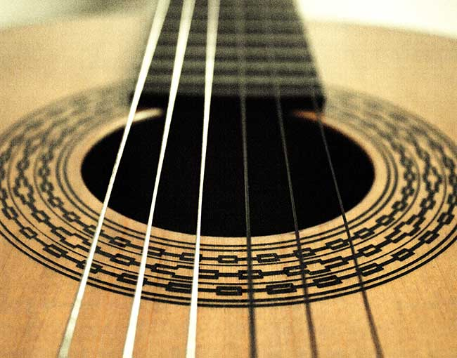 A closeup of guitar strings