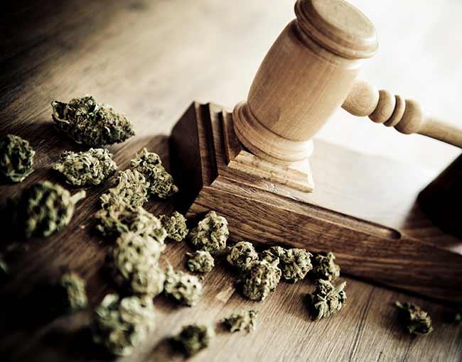 marijuana-and-law_21510251032_o