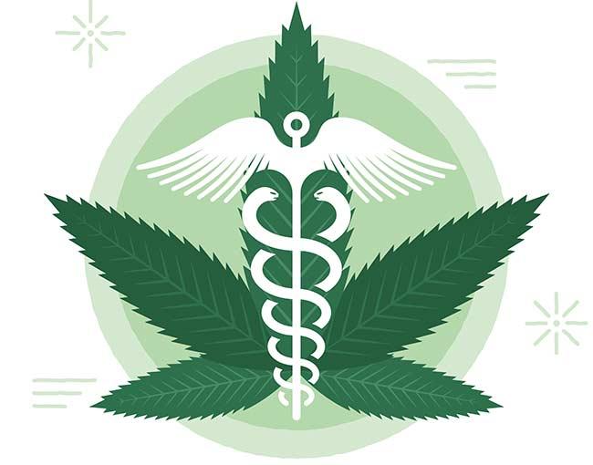 marijuana-study_25279030209_o