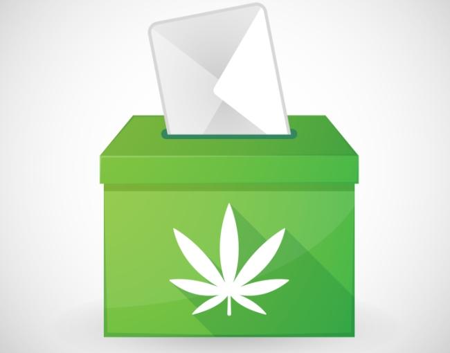cannabis ballot