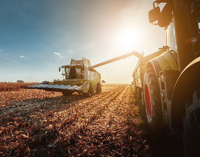 Tractor harvesting crops in field