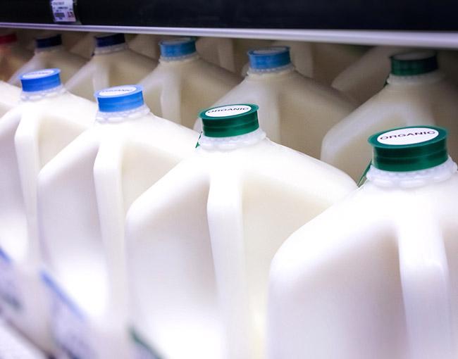 organic-milk-650x510