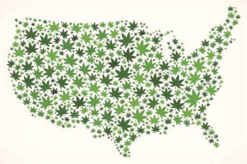 Illustration of U.S. map made of cannabis leaves