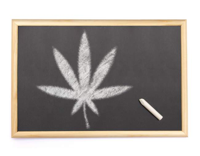cannabis leaf drawn on chalkboard